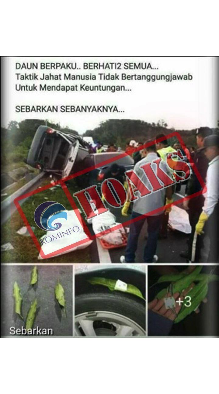 Hoax Kecelakaan Akibat Daun Berpaku